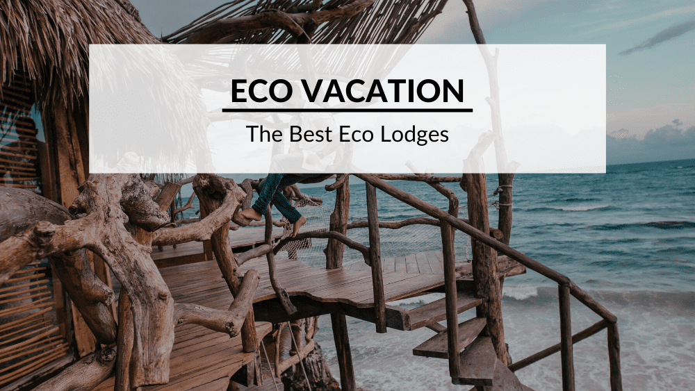 eco lodge feature