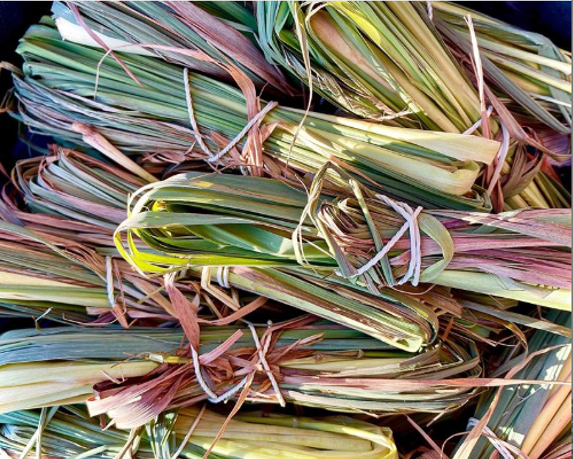 A pile of bundles of dried Lemongrass leaves, tied with natural grass.