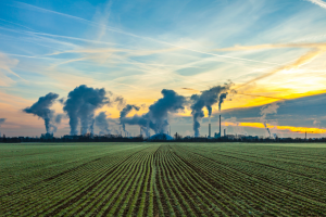 Royalty free image from Canva.com - smoke stacks against a sunset sky behind agricultural fields