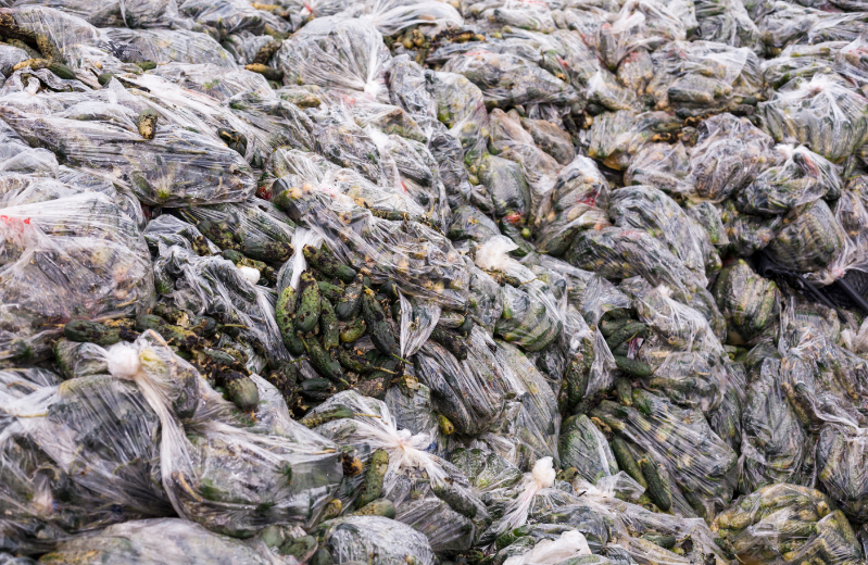 Food waste - Cucumbers in plastic in a landfill