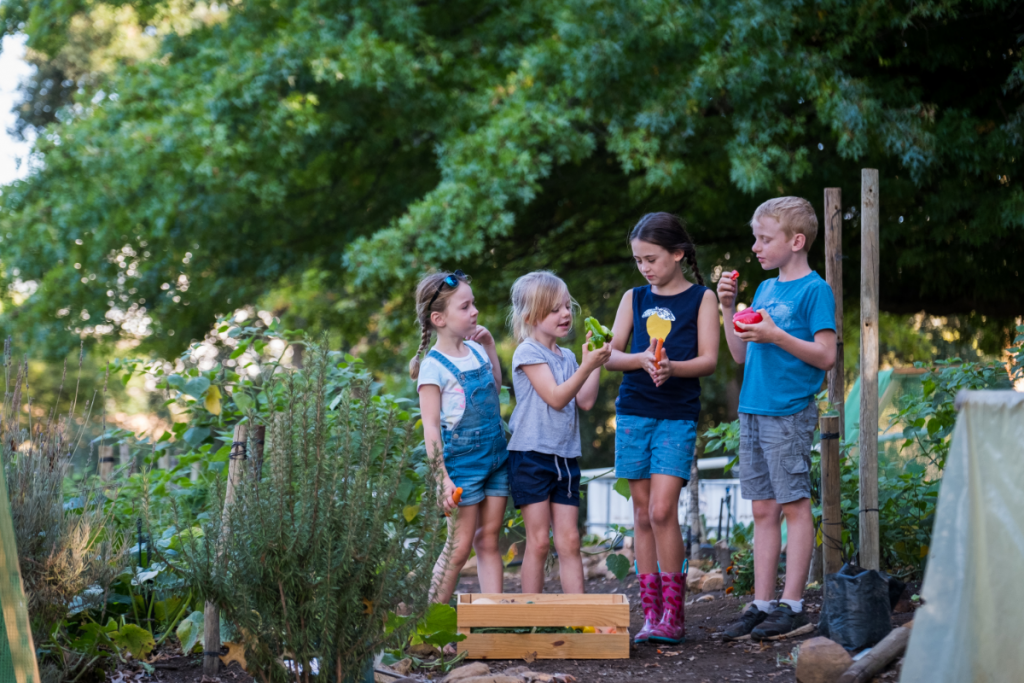 Teaching kids about sustainability -four young kids in a veggie garden