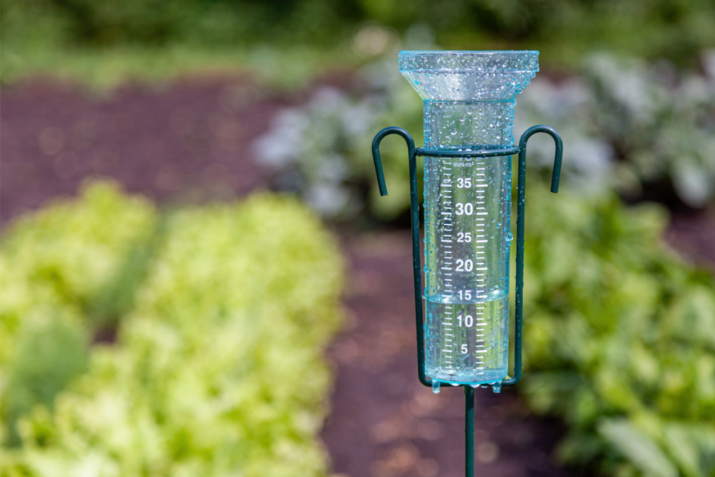 Ways to Conserve Water - Image of a Rain Gauge in front of a Rain Garden