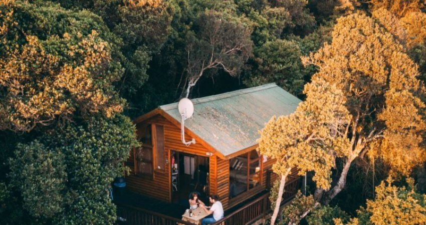 Canva-Off-grid-House-in-the-Forest-NZ