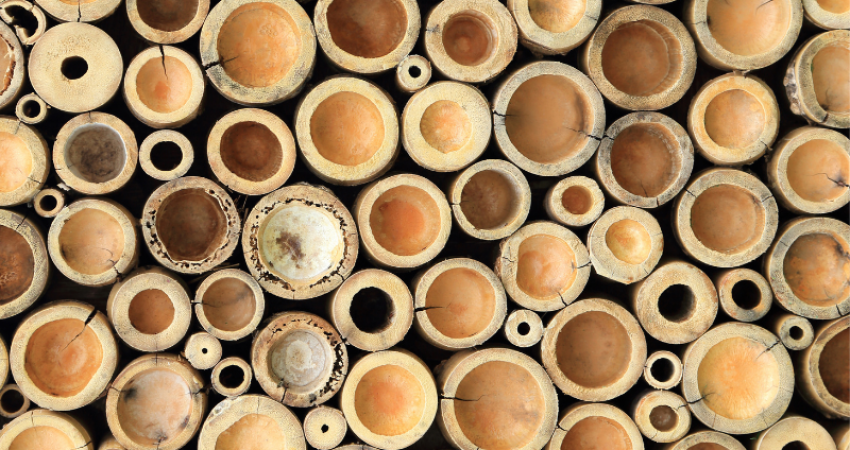 Free Image from Canva - Stacked Bamboo Stems
